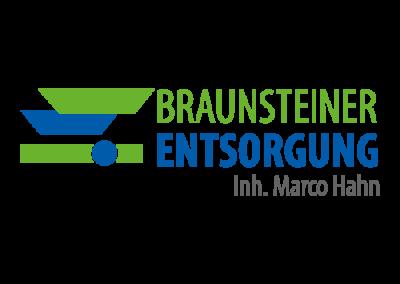 Logo__Braunsteiner