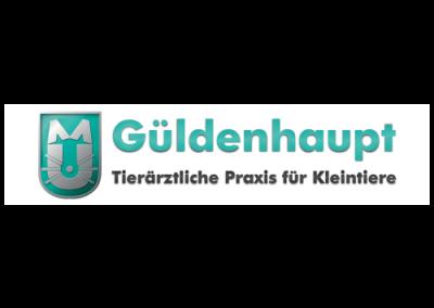 Logo__Güldenhaupt